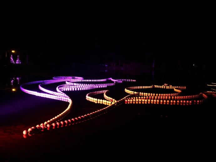 チューリップ公園イルミネーション 「ひょうたん池」ライトアップ
