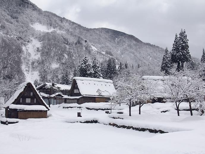 相倉合掌造り集落 雪景色