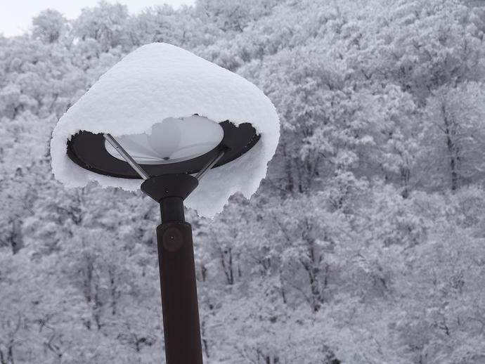 街灯にも雪の帽子(相倉合掌集落)