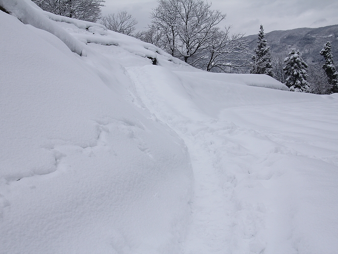 相倉合掌集落全景撮影スポットへの道(冬)