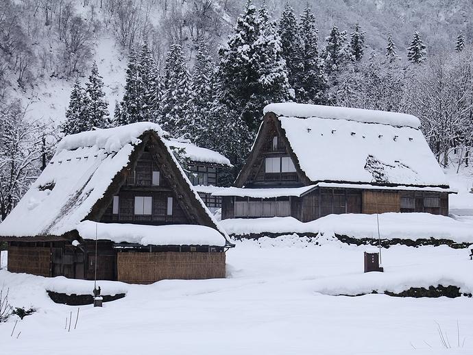 雪の積もった五箇山の合掌集落(相倉)