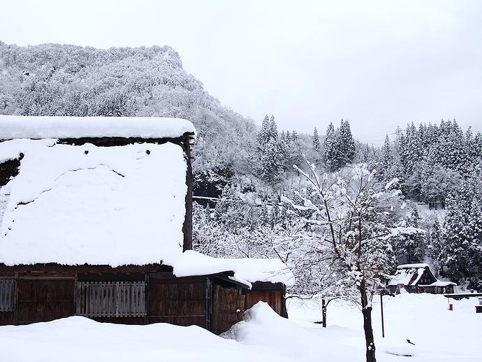 雪が積もった合掌集落 南砺市相倉