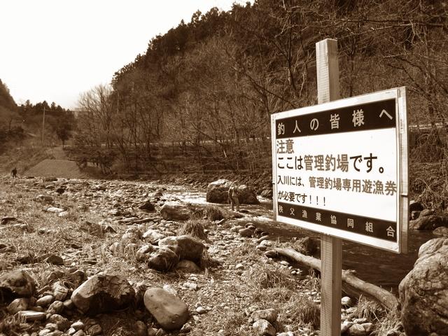 2012.3.11 秩父ff (29)