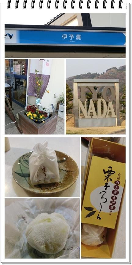 240327伊予灘blog