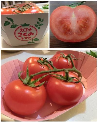 240331こくみトマト-vert