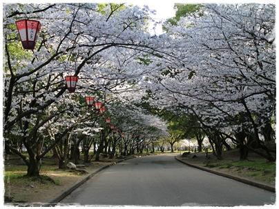 250403丸亀城8(遊歩道)