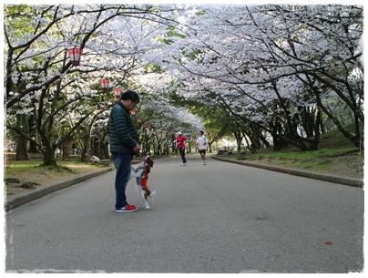 250403丸亀城9(pocoとpocopapa2)