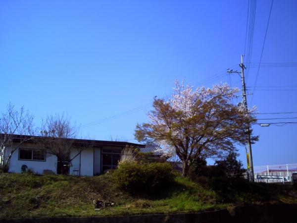 PICT0138小_convert_20120412223709
