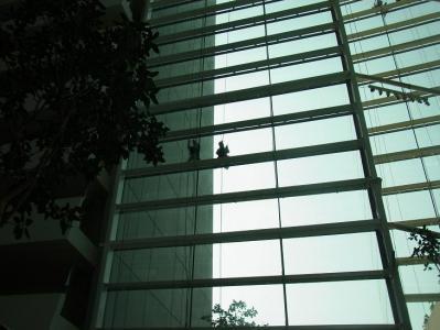 ベイサンズ_窓拭き