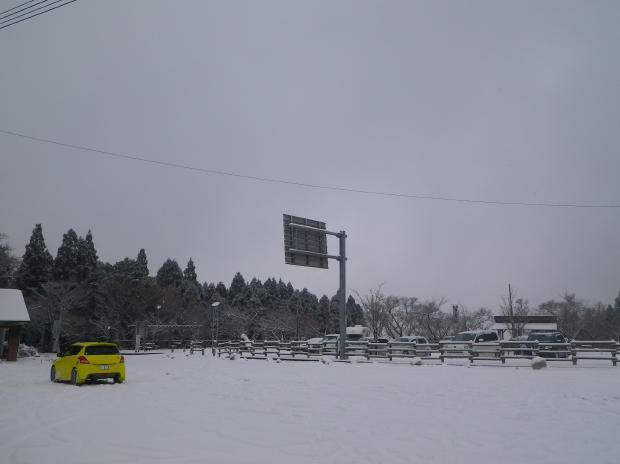 駐車場には多数の車