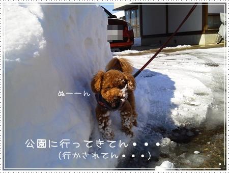 2012-02-19-1716.jpg
