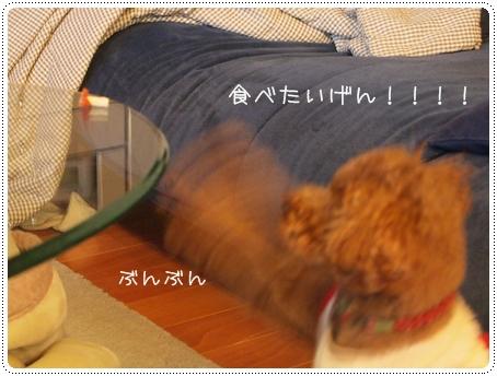 2012 01 27_4687