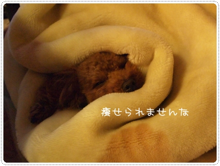 2012 01 04_4048