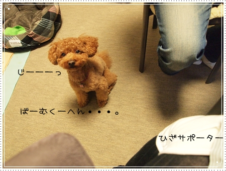 2012 02 19_5501