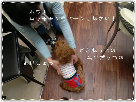 2012 04 01_6750