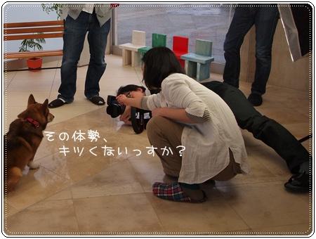 2012 04 01_6899 - コピー