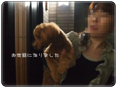 2012 04 24_8159