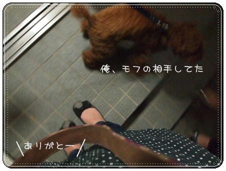2012 04 24_8157