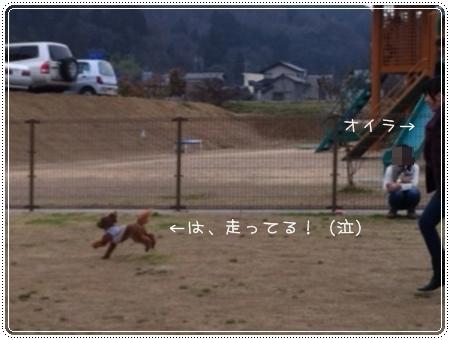 201303277__.jpg