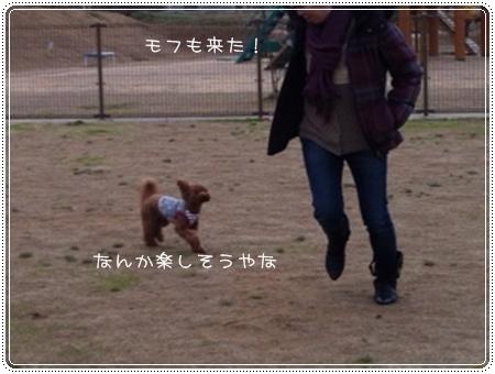 201303278__.jpg