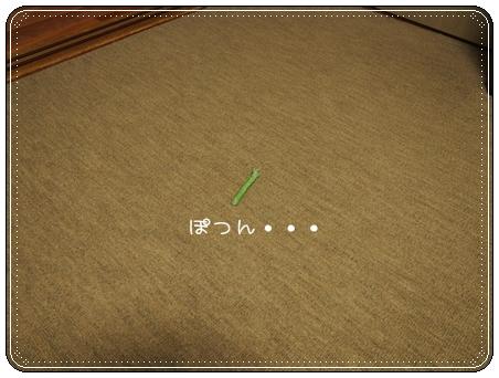 2013 04 20_6722