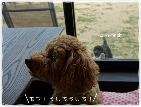 2013 05 13_7764