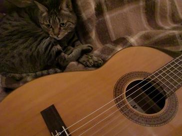 みるギター2