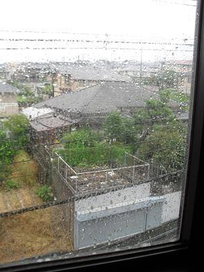 5 台風15号