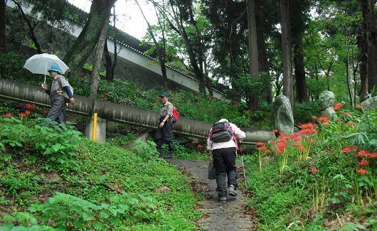5 初瀬山・登山道
