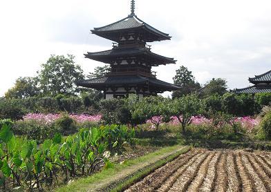 3 法起寺
