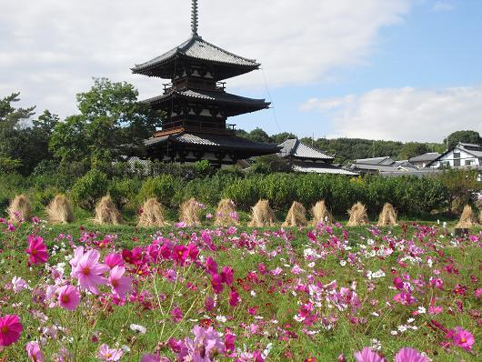 4 法起寺