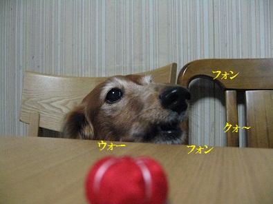 IMG_4939.jpg