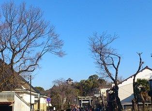 犬山133