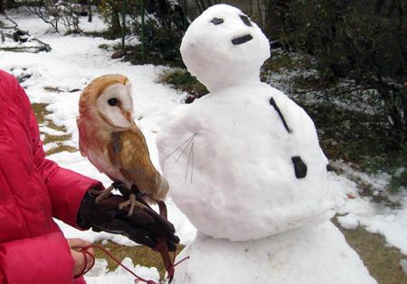 雪だるまと一緒