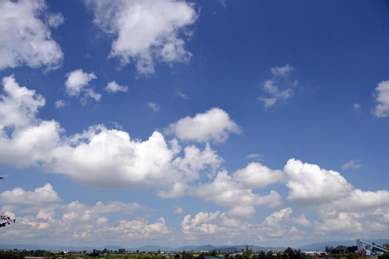 2011_0821nwan 049-80