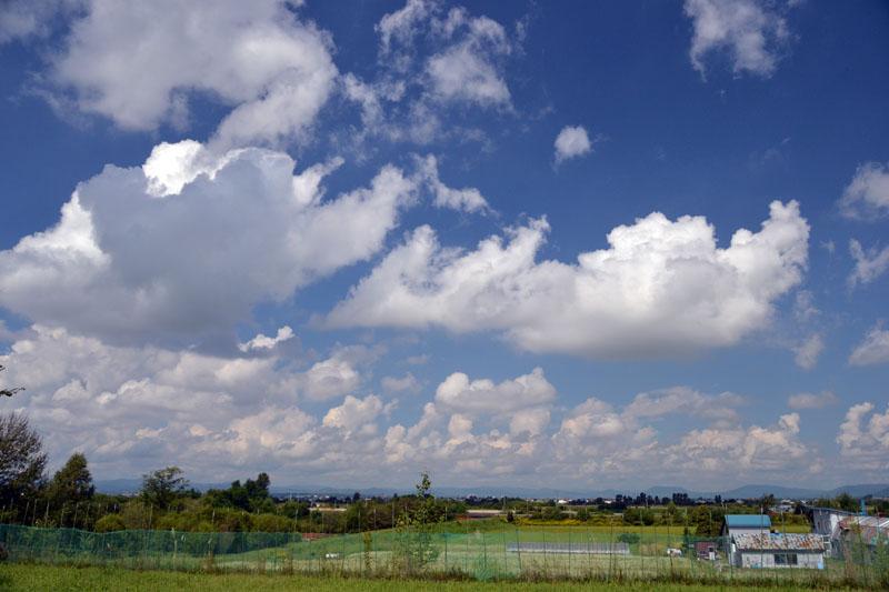 2011_0821nwan 050-80