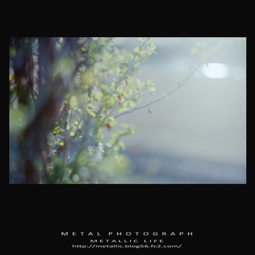 mlsr20131124-14