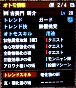 MH4H033d.jpg