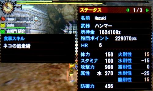 MH4H036a.jpg