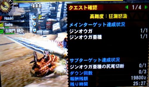 MH4H036d.jpg