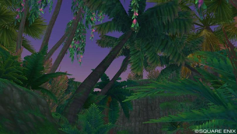 ブーナー熱帯雨林