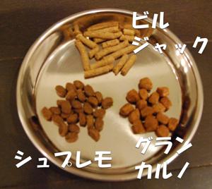 2012-04-02_02.jpg