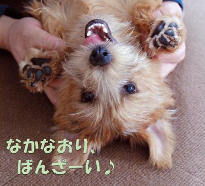 2012-04-02_05.jpg
