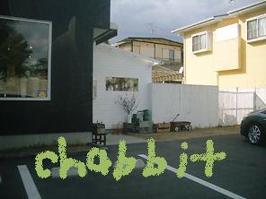 chabbit