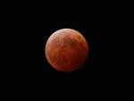 月食2014_04