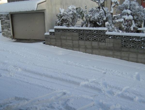 20111117_yuki_01.jpg
