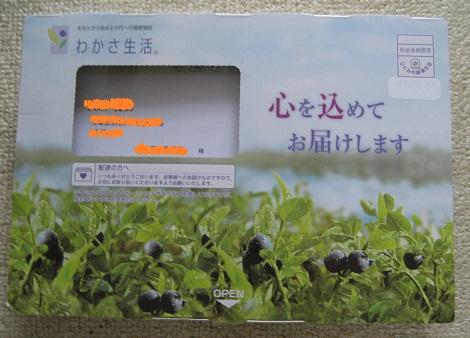 sofiarose_01.jpg