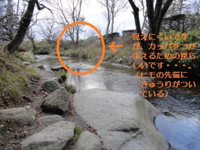 DSC01091_convert_20111204235151.jpg
