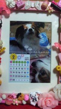 diary110201.jpg