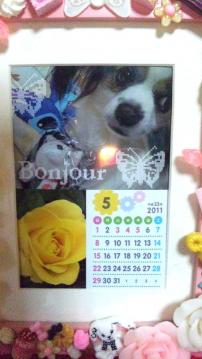 diary110501.jpg